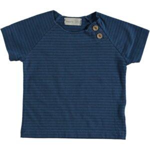T-shirt Clownfish Blue Beans
