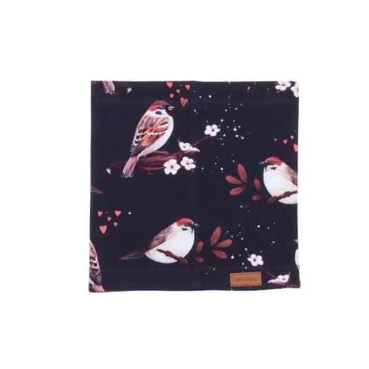 Scaldacollo Little Sparrows Walkiddy